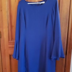 Blue bell sleeves dress